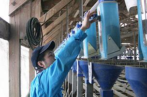 機械を操作している男性スタッフの写真